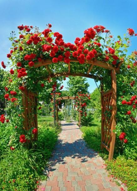 Italcasadecor - Giardino con rose ...