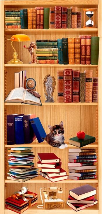 Italcasadecor for Carta da parati libreria